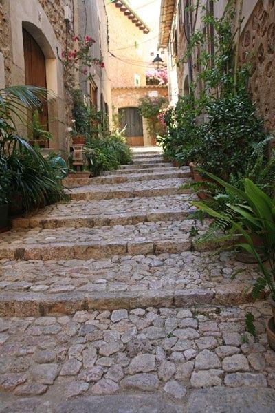 Ook op zoek naar een doorkijkje voor u tuin for Trap naar boven