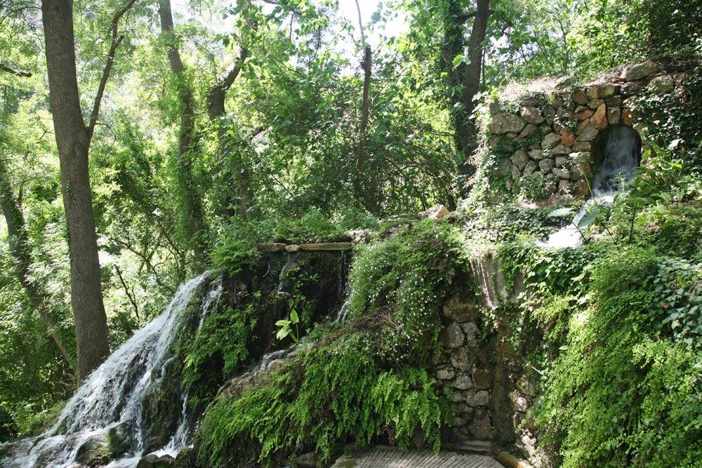 Muur van keien met een kleine waterval begroeid met diverse planten