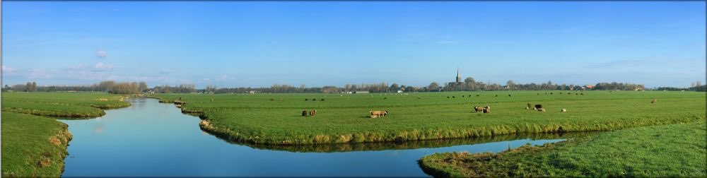 Hollandse Graslandschappen 11