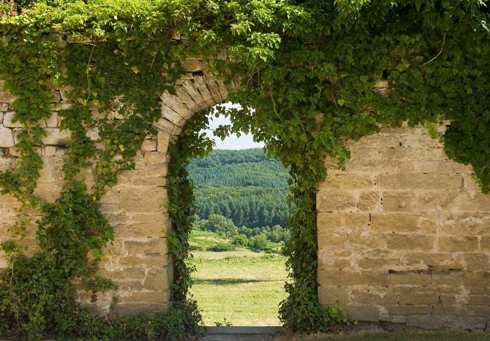 Muur begroeid met klimplanten en doorgang naar tuin - Muur tuin ...
