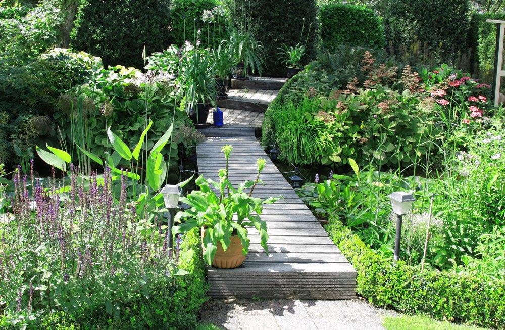 Houten loopplank voor vijver in een botanische tuin for Hout voor vijver